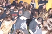 AMAs Finale 2006 10